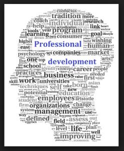 Professional Development Services